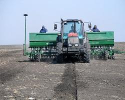 小麦播种机